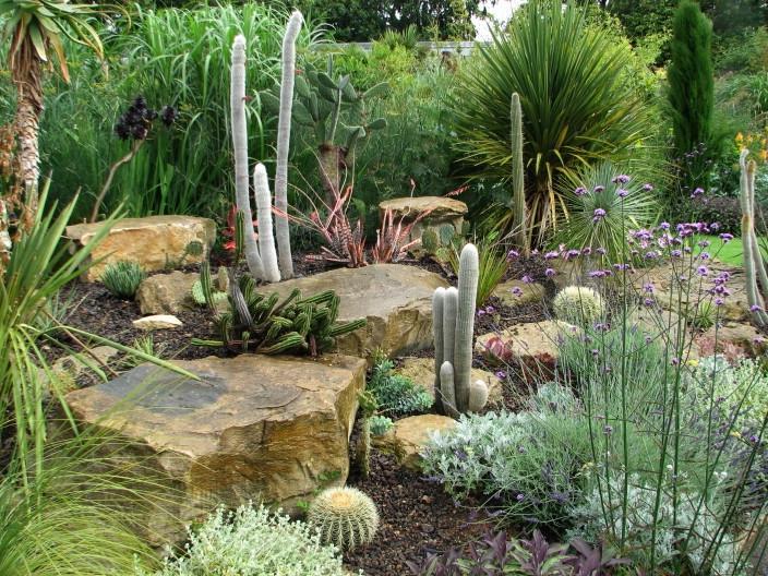 Cactus Front Garden Design Ideas 18 Excellent Cactus Garden Source